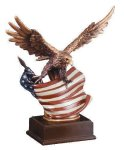 Eagle With Flag  Wing Span Eagle Awards