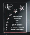 RIST-7 3 Dimensional Carved Star Plaque  Employee Awards