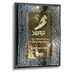 Wave Wall Plaque Recognition Plaques