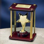 Brass Star Enclosed in Glass Box Rosewood Glass Awards