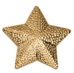 Gold Star Metal Chenille Letter Insignia Star Awards